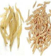 麦冬的治病功效?14条实用麦冬治病偏方
