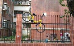 共享单车乱象,创业者需要的不只是投机和勇气