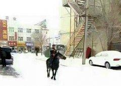 帅!快递员骑马送包裹 暴雪也挡不住敬业心