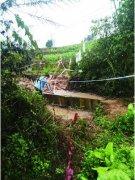 10男子盗墓吸入毒气4人身亡 被盗古墓为县级文物