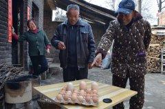 大妈家养的鸡生下超大鸡蛋:一个顶三个 想申报吉尼斯纪录