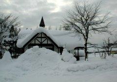 梦见下白雪