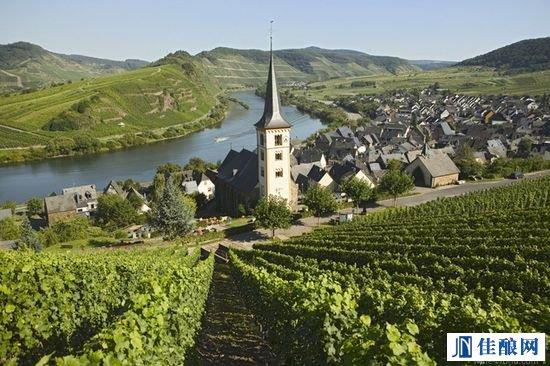 德国葡萄酒为何如此酸爽迷人?