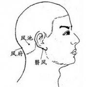 推拿按摩这两个穴位 提高抵抗脑风邪的能力