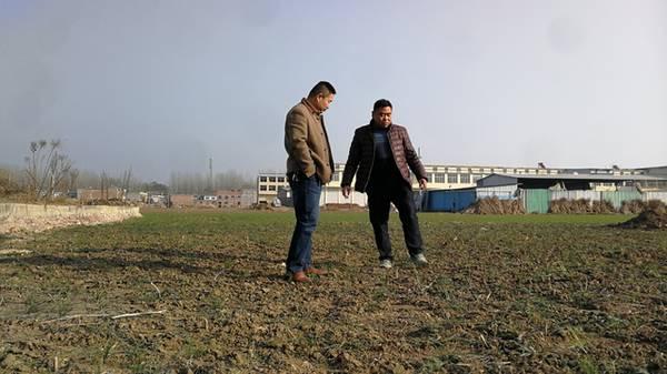 农村大学生放弃30万年薪回乡创业,扎根农村成就大梦想!