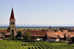 走进法国最美酒乡——阿尔萨斯