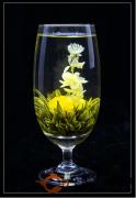 茉莉花茶是否属于绿茶