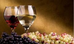 纳帕谷:葡萄酒的美国往事