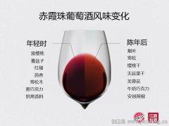 5步判断葡萄酒的陈年潜力