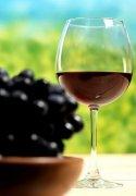 酿造葡萄酒可能会回归原始