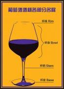 酒杯也能影响葡萄酒的品鉴 你知道吗?