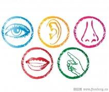 3大感官之味觉、嗅觉和触觉分析