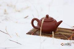 【散文】雪茶