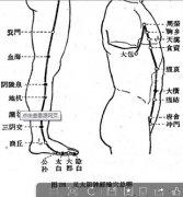 足太阴脾经对人体的作用 脾经上穴位的功能
