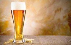 啤酒对跑者的影响有多大?