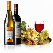 葡萄酒的地质学