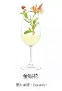 葡萄酒品酒词大起底