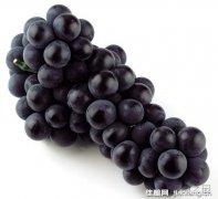 介绍世界上最重要的5种葡萄