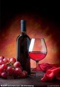 5个建议提升葡萄酒IQ