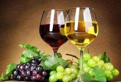 不同颜色的葡萄酒是不同颜色的葡萄酿造的吗?