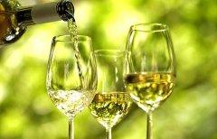 有葡萄美酒相伴 春意才会更浓