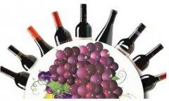 葡萄酒世界太复杂 记住这九点就算入门了!