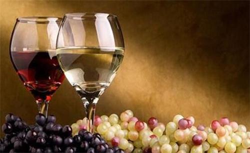 酿造红酒的主要葡萄品种