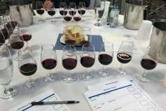 品鉴葡萄酒时需要注意那些关键要素?