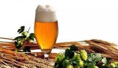 啤酒肚对男人有什么危害?男人告别啤酒肚的7种方法