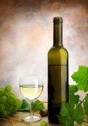鸿宁酒庄:美国加州著名酒庄之一