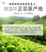 中国最香的七款茶