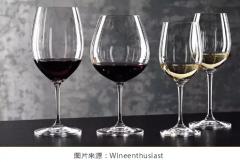 葡萄酒品鉴入门指南
