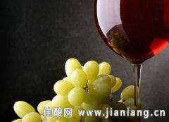 品尝意大利岛屿葡萄酒