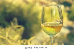 热狗与葡萄酒的搭配指南