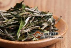 关于安吉白茶和白茶的误解!