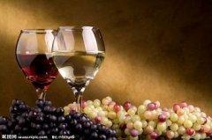 法国家族独立经营知名香槟酒庄——沙龙帝皇香槟