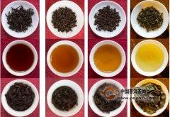 茶叶都能泡几次?那得看是什么茶