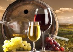 去葡萄酒厂旅游需要注意那些小细节?
