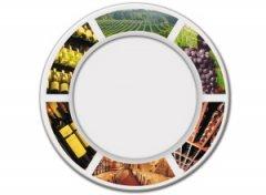 说出葡萄酒的营销态度与消费主张