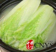 自制减肥食谱 白菜可减少体内毒素