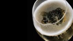 美食美酒之香槟配餐指南