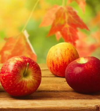 秋冬适合干燥季节养生的十种水果