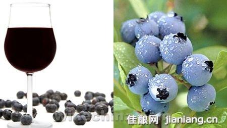 后起之秀:蓝莓酒