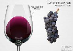 马尔贝克葡萄酒简介及配餐指导