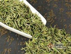 东白春芽茶的特点