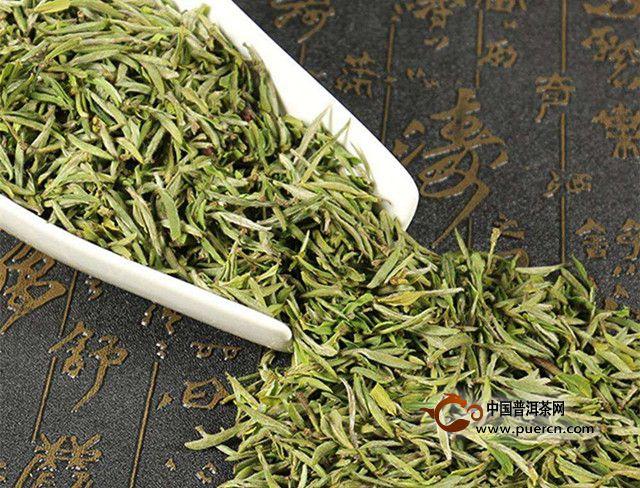 东白春芽是绿茶吗