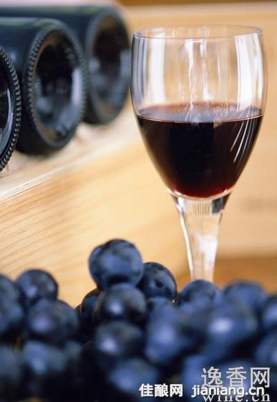 葡萄酒和吃葡萄哪个更有益健康