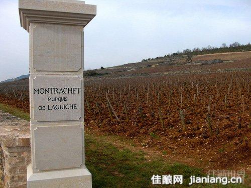 勃艮第33座特级葡萄园排行榜