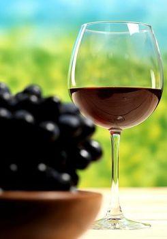 诗梦得酒庄:南非顶级三大酒庄之一