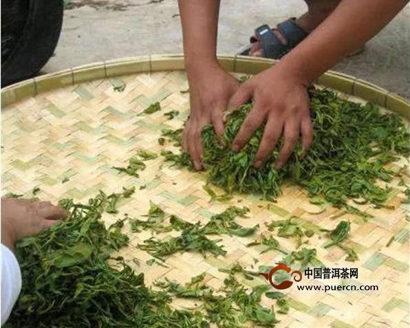 做茶,机械制茶与手工制茶,孰优孰劣?